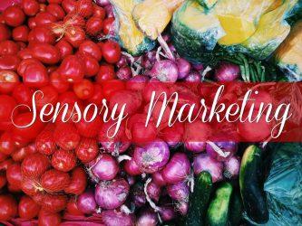 بازاریابی حسی-بازاریابی-کسب و کار-کارافرینی-استارتاپ-فروش-حواس-مانی شجاعی