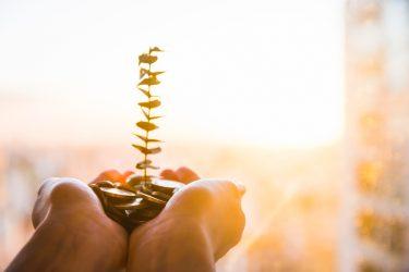 کارآفرینی-کسبوکار کوچک-ضروت کارآفرینی-آموززش کارآفرینی-ضرورت آموزش کارآفرینی-مانی شجاعی