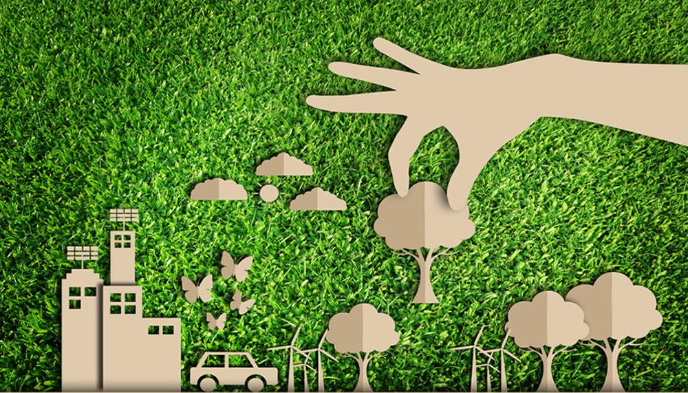 کارآفرینی-اشتغال-محیط زیست-اشتغال سبز-فرصت های محیط زیست-فرصت های کارآفرینی-مانی شجاعی