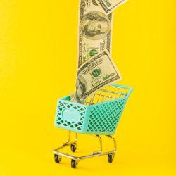قیمت-قیمت گذاری-محصول-فروش محصولات-فروش-بازاریابی-بازار-قیمت گذاری-تحلیل بازار-تحلیل فروش-مانی شجاعی